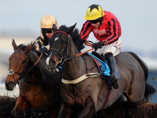 Bless The Wings: Hated the testing ground at Cheltenham
