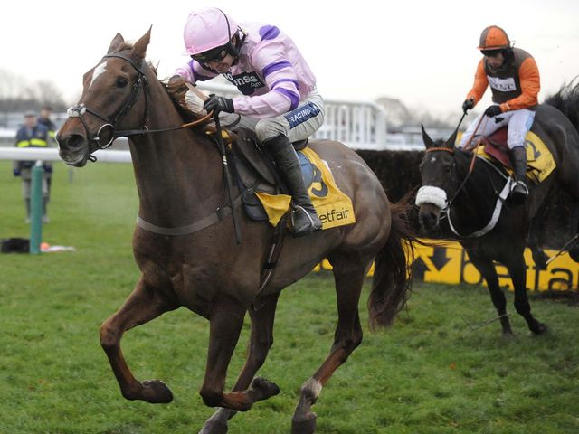 Silviniaco Conti: Newbury hopeful