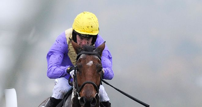 Uncle Junior: Successfully defended his Glenfarclas Cross Country Chase crown at Cheltenham