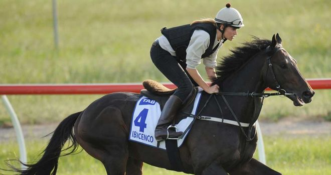 Ibicenco: Fine win in the Sportingbet Sandown Cup