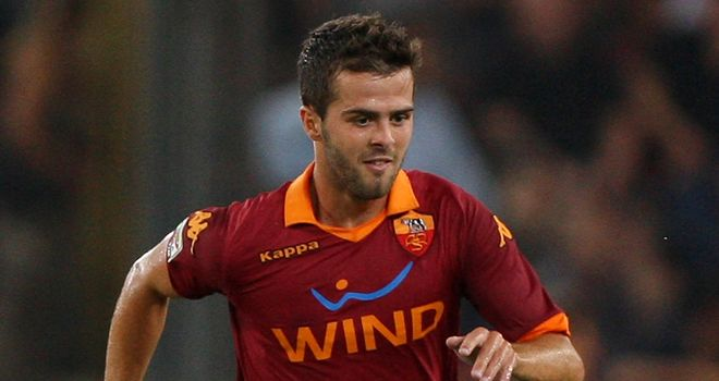 Miralem Pjanic: Has received the backing of Asmir Begovic
