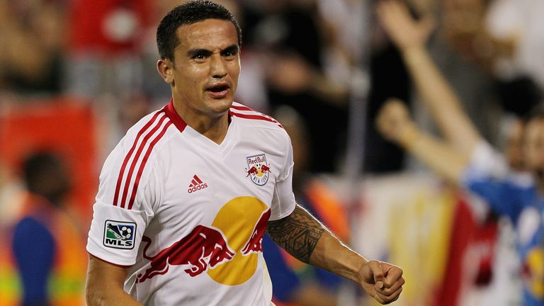 Tim Cahill: Hopes to return to Goodison Park on loan