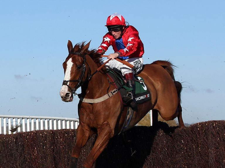 Sire De Grugy: Ready to take on Sprinter Sacre