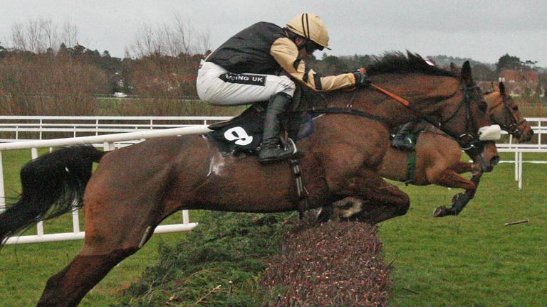Tidal Bay: Set to carry top-weight in the Grand National