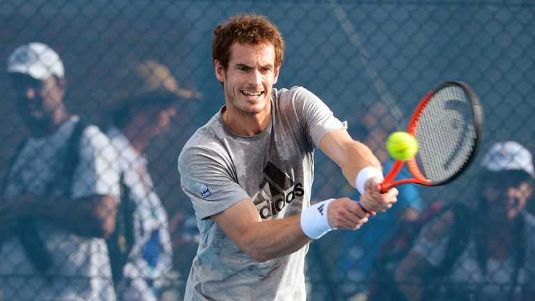 Andy Murray: Second favourite for Australian Open title