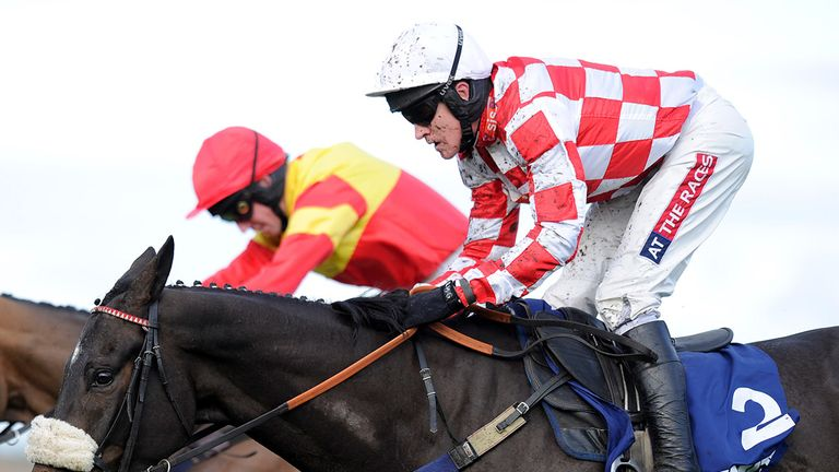 Puffin Billy: Has impressed for Oliver Sherwood