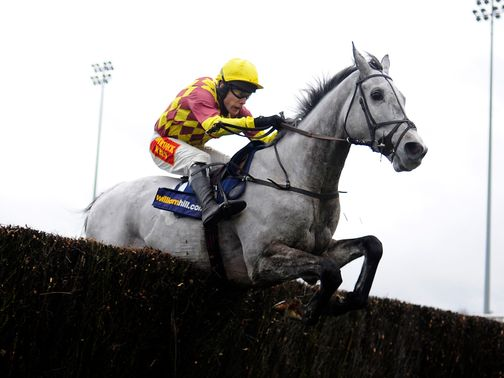 Dynaste is among 49 entries for the RSA Chase