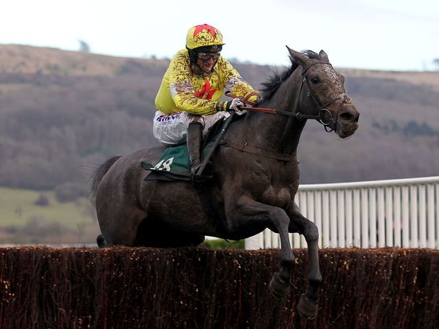 Unioniste wings the last to win at Cheltenham