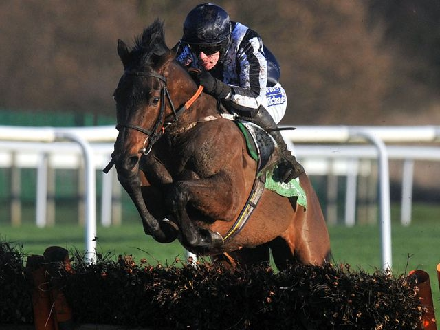 Countrywide Flame makes a sparkling return to action at Newcastle