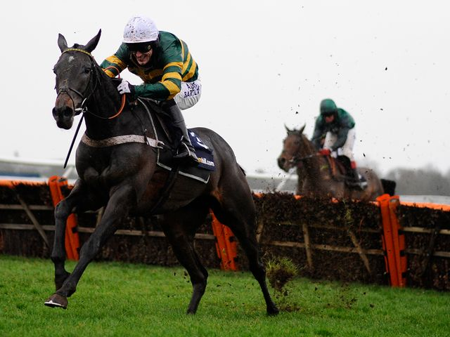 Darlan: Brilliant winner of the Christmas Hurdle