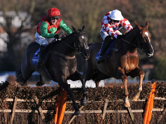 Taquin Du Seuil: Jumps to the front at the final flight