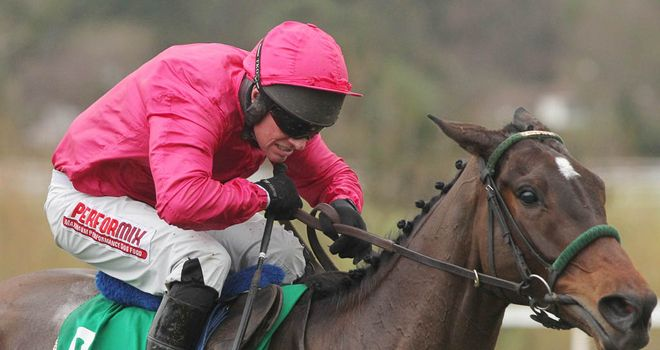 Monksland: Unlikely to run at Cheltenham