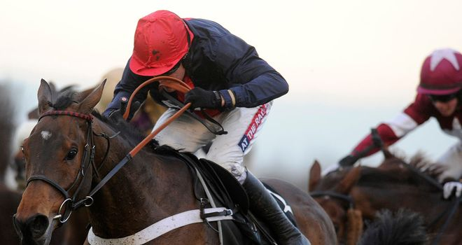 Bobs Worth: Cheltenham Gold Cup favourite