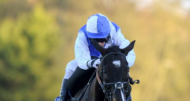 Bold Sir Brian stormed clear for a comfortable success at Sandown