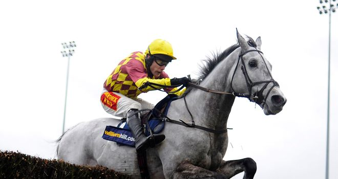 Dynaste: Looks set to go for the RSA Chase