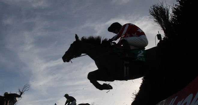 Riders in action over jumps at Navan