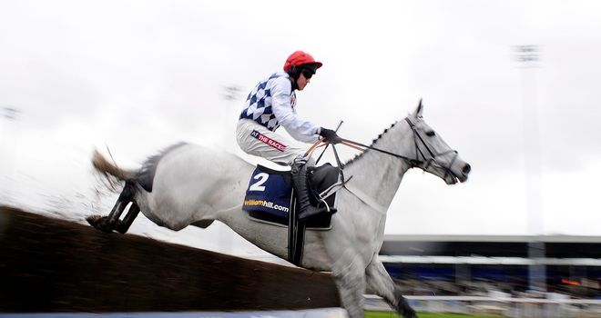 Simonsig: Heads 33 entries for the Racing Post Arkle Trophy