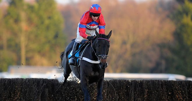 Sprinter Sacre faces eight rivals at Cheltenham if the meeting goes ahead