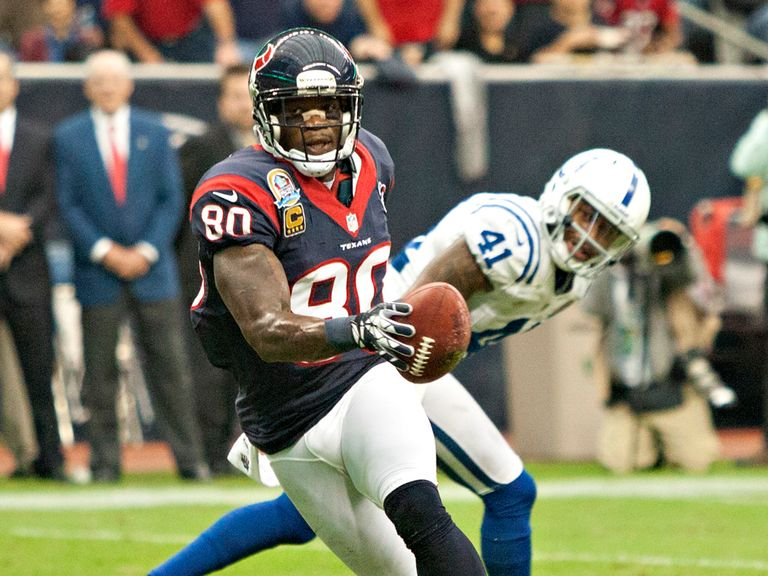 Andre Johnson: Gained 151 yards and scored a Texans touchdown