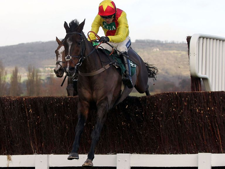 Cheltenham: Goes ahead