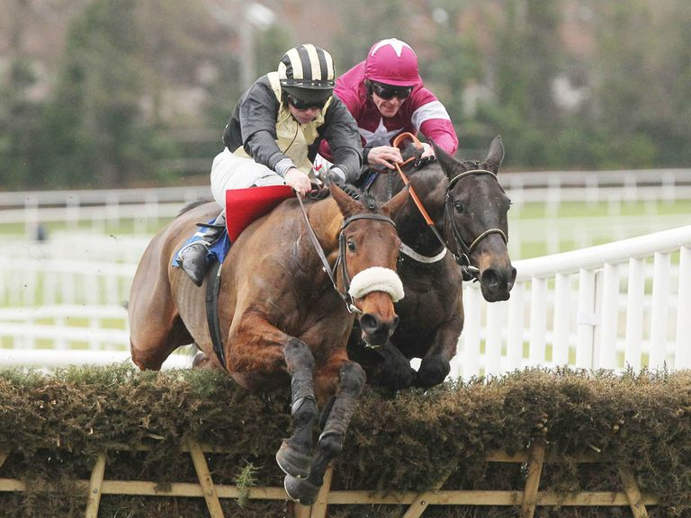 Talbot Road: Won't be heading to Cheltenham