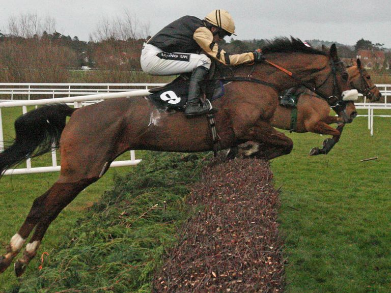 Tidal Bay: World Hurdle and Grand National his big targets