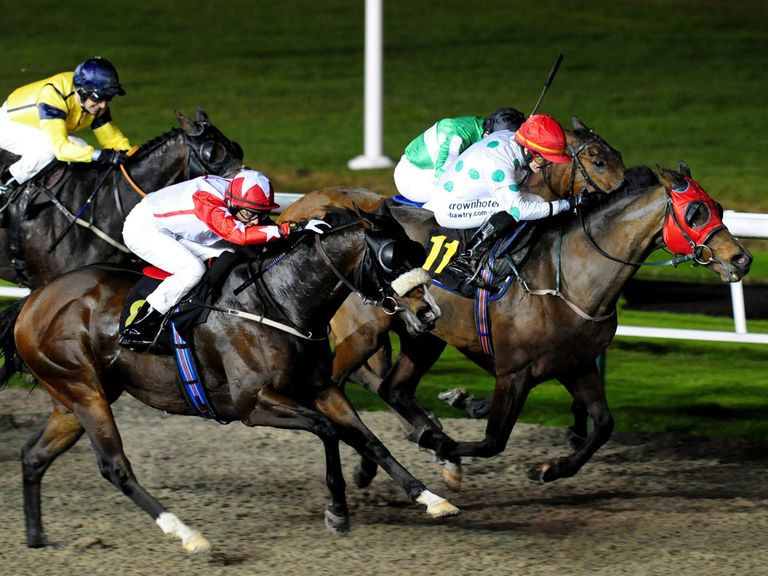Wolverhampton plays host to this evening's racing