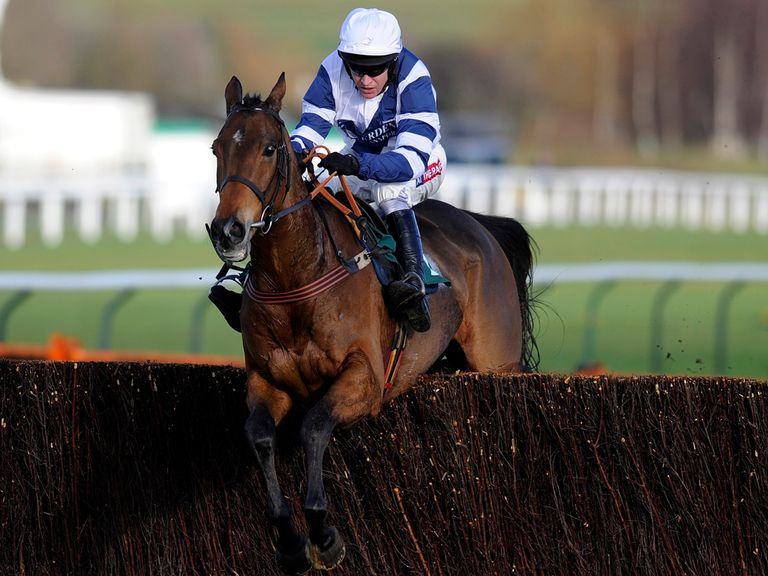 Highland Lodge jumps to victory at Cheltenham