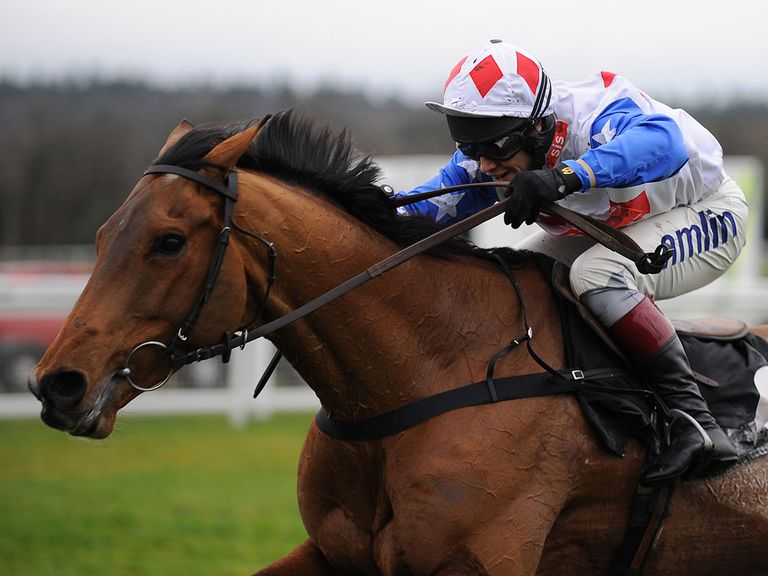 Reve De Sivola: World Hurdle the target