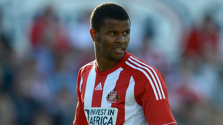 Fraizer Campbell: Subject of a Cardiff City bid.