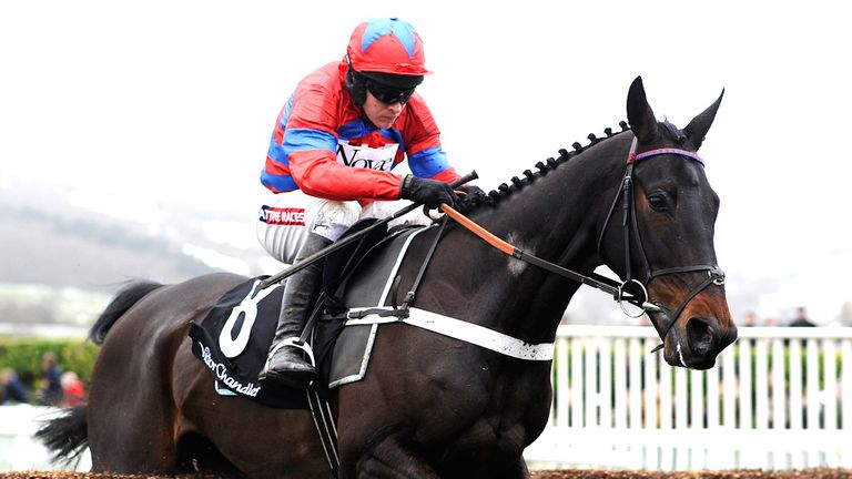 Sprinter Sacre: Scared off the opposition