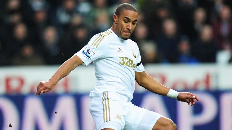 Ashley Williams: In action during the 3-1 victory over Stoke