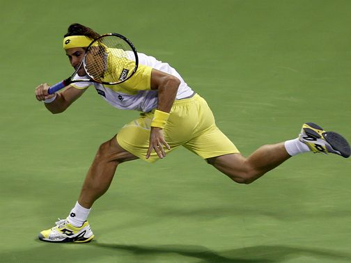 David Ferrer: Books quarter-final spot