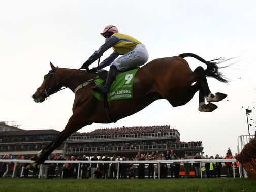 Overturn: Cut for the Arkle after winning at Musselburgh