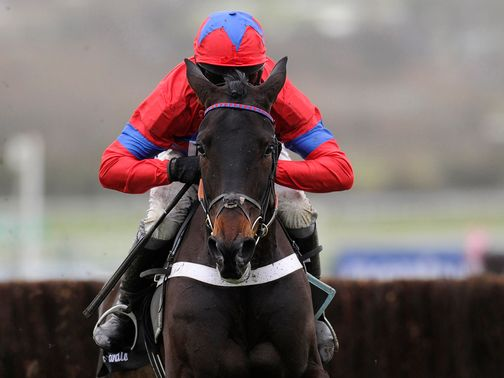 Sprinter Sacre: Impossible to oppose