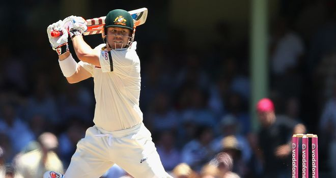 David Warner: Australia opener is at the IPL playing for Delhi Daredevils