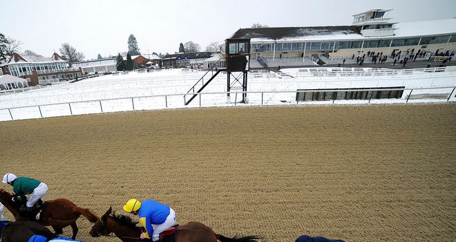 Lingfield: 'Good to go' according to clerk of the course Neil Mackenzie Ross