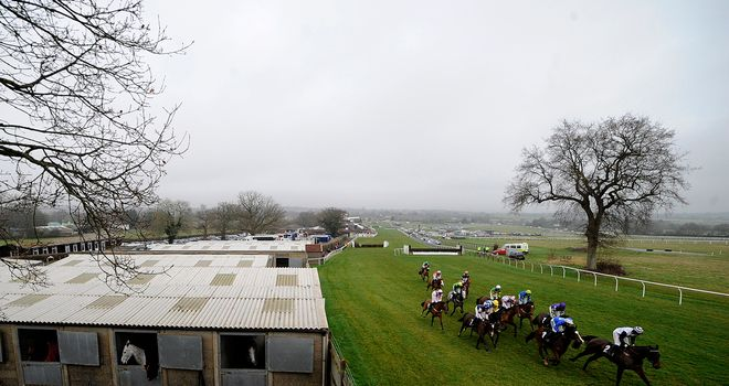Plumpton: Raceday inspection