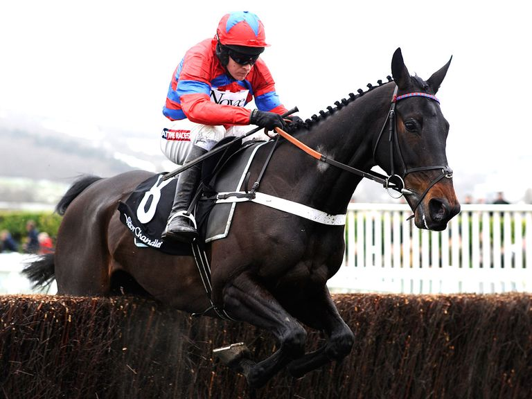 Sprinter Sacre: The bookies don't have much hope...