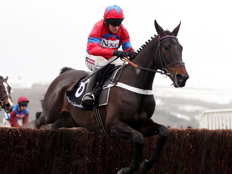 Sprinter Sacre: As short as 1/4 for the Festival