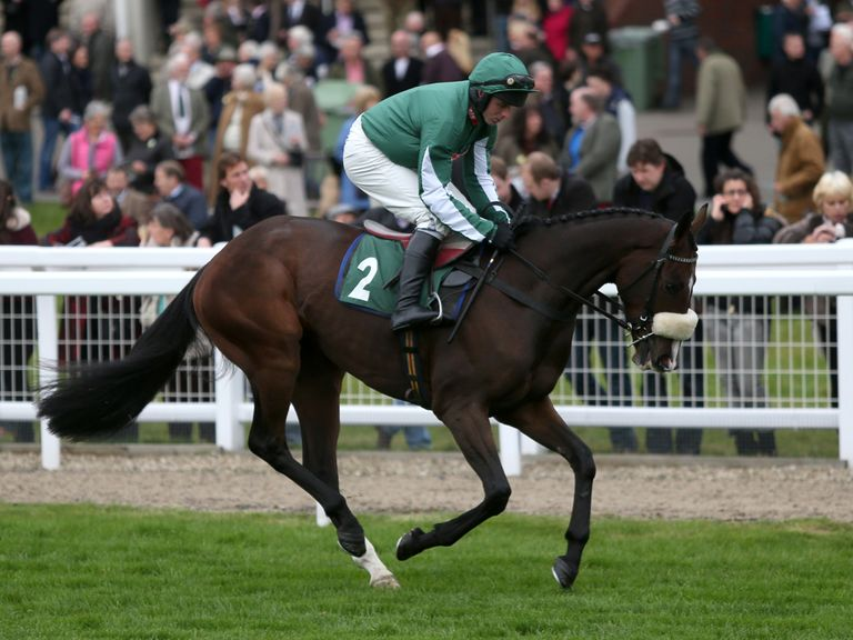 Court Minstrel: Handicap option at the Cheltenham Festival