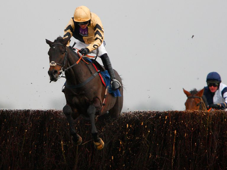 Fago: Being aimed at the Arkle