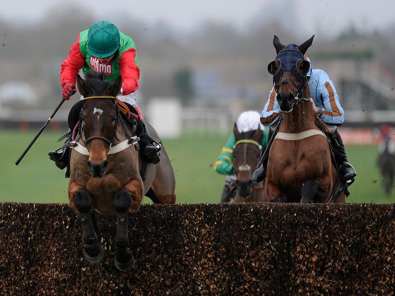 Salden Licht: Set to be entered for races at the Cheltenham Festival