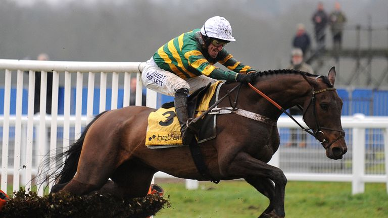 My Tent Or Yours: Already verging on Champion Hurdle class