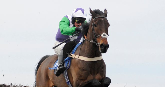 Opening Batsman: Has two remaining options at Cheltenham