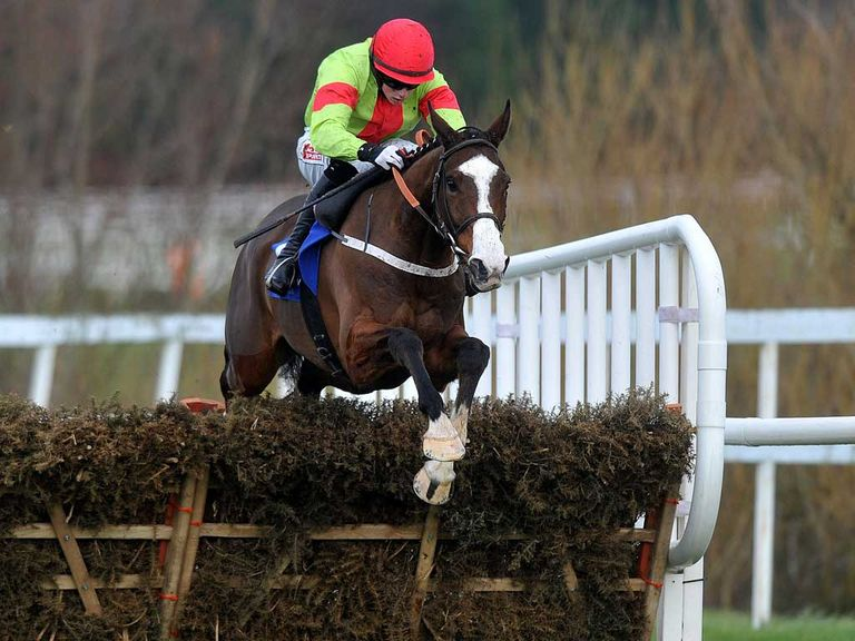 Our Conor: Triumph Hurdle hopeful
