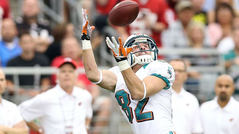 Brian Hartline: Played his part in a promising season for the Dolphins