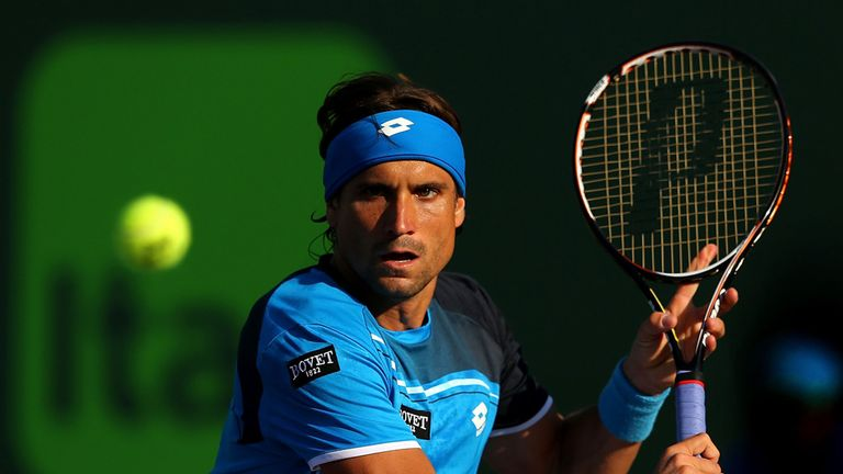 David Ferrer: Breezed through the deciding set
