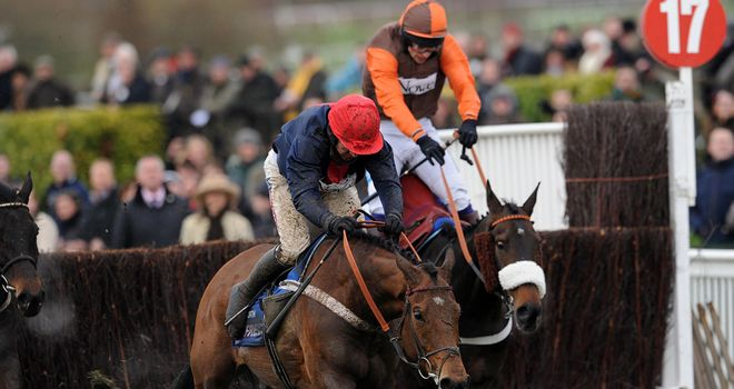 Bobs Worth: Triumphant in the Gold Cup