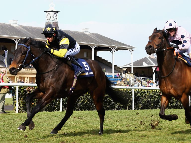 Jack Dexter (left): High draw for Ayr Gold Cup